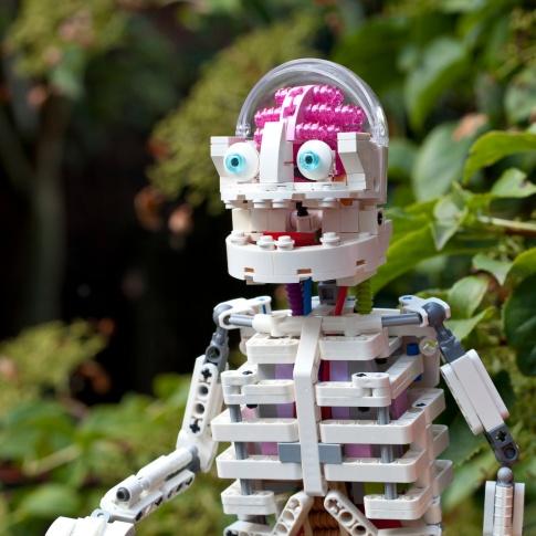 Lego Ideas Anatomini