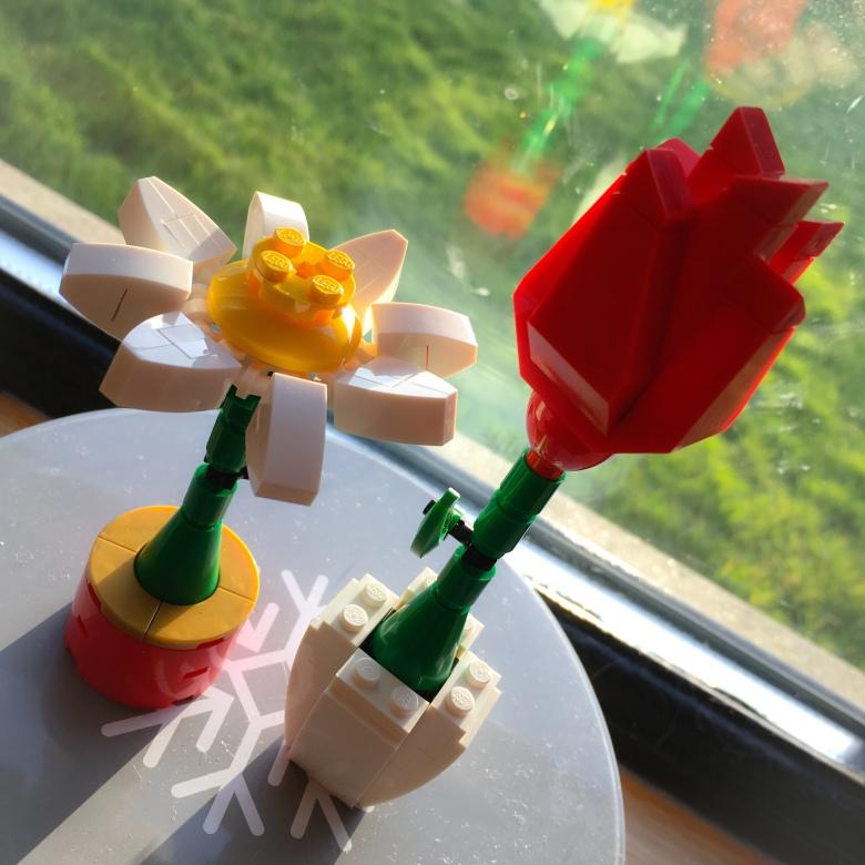 Lego Flowers Tulip and Daisy